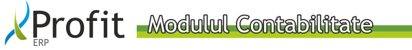 Profit-ERP_modulul_contabilitate[1]