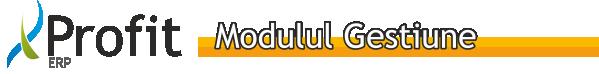 Profit-ERP_modulul_gestiune